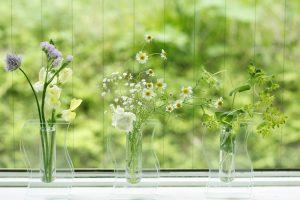 自然素材を使い、住む人と環境に優しい家づくり